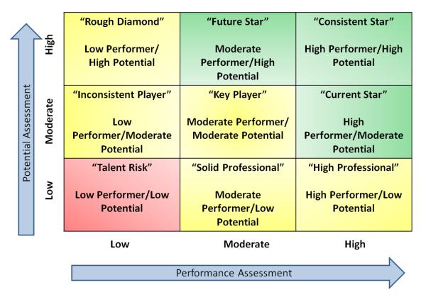 9-box grid potential matrix